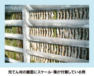 充てん材の表面にスケール・藻が付着している例